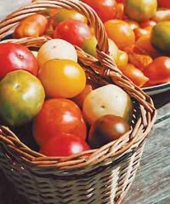Управляла длинного хранения овощей и плодов