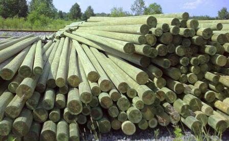 Почему стоит выбрать деревянные опоры лэп